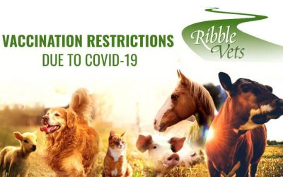 Vaccination Restrictions Due To COVID-19