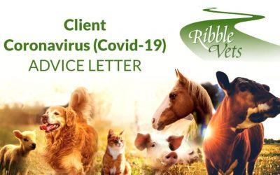 Client Coronavirus (Covid-19) Advice Letter
