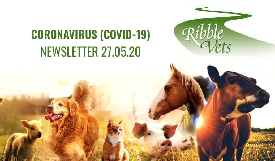 Coronavirus (Covid-19) Client  Newsletter