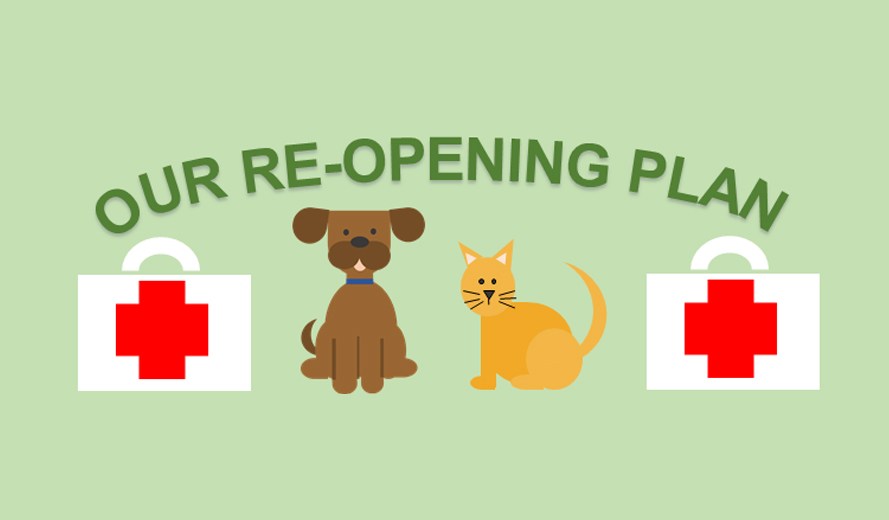 Our Re-opening Plan