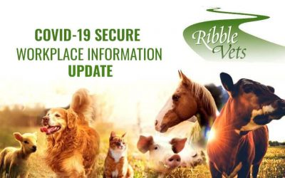 Covid-19 Secure Workplace Information – Update